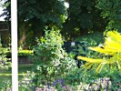 Sommerliche Blumen und Grün im  Biergarten des Gasthofs Brüning in Görzke